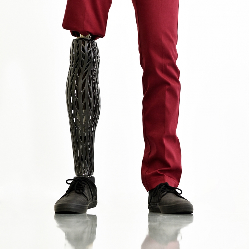 Organic Prosthetic Leg - fashion design